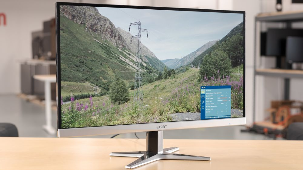 best monitors under $300